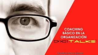 Coaching básico en la organización Nº.3