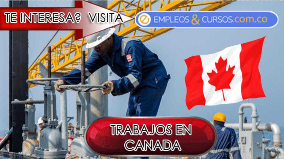 Trabajo en empresas del sector petrolero en Canáda